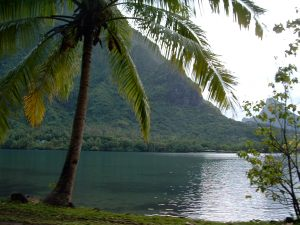 2006-french-polynesia-tahiti-and-moorea-094