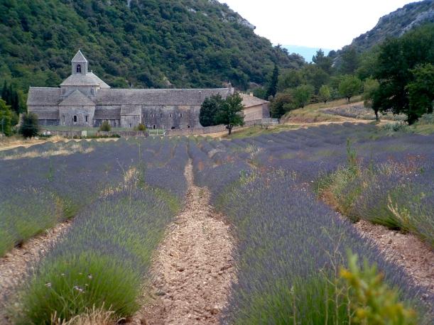 2006 France June 323_2