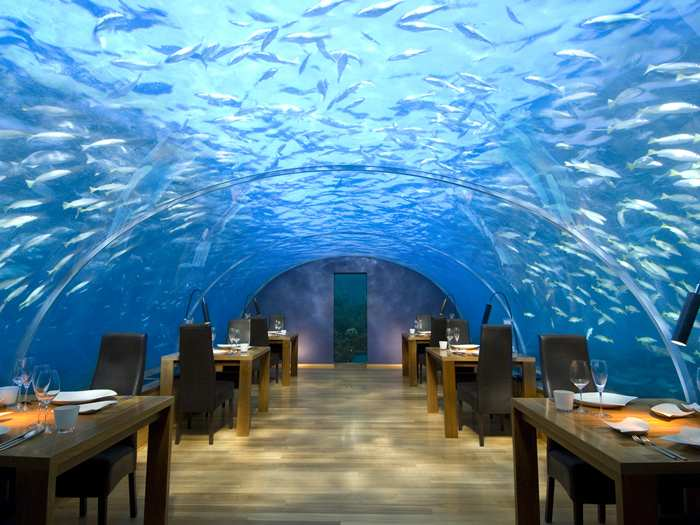 Come dine in our underwater restaurant